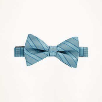 Beyond The Sea Striped Bow Tie