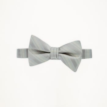 Biscotti Striped Bow Tie