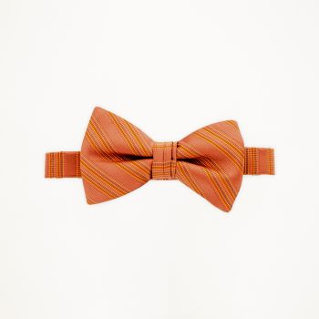 Burnt Orange Striped Bow Tie