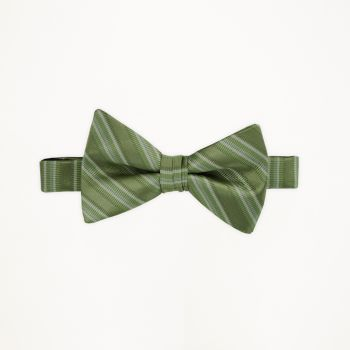 Clover Striped Bow Tie