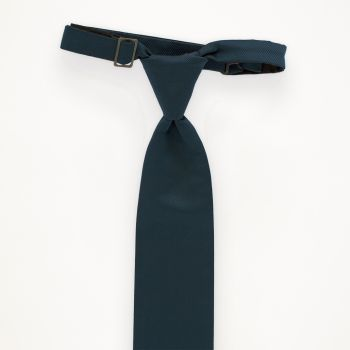 Peacock Solid Long Tie