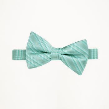 Pool Striped Bow Tie