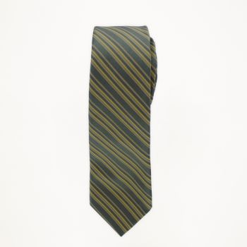 Tarragon Striped Long Tie