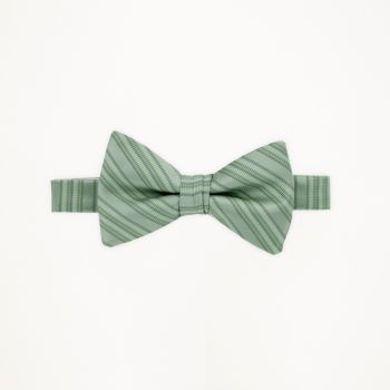 Waterfall Striped Bow Tie