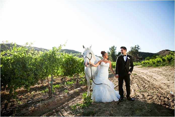 Black Desire tuxedo, Michael kors tuxedo, slim fit, gershon bachus vintners, Temecula wedding, Michelle Garibay events, if you are thinking about a destination wedding, wine country, gold wedding, boutique feel, luxury, luxurious, lavish, elegant, regal, Jaime elyse couture, bride and groom horse