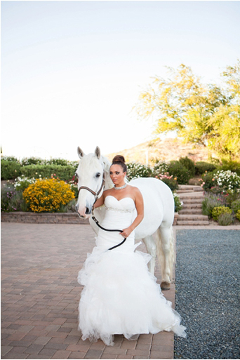 Black Desire tuxedo, Michael kors tuxedo, slim fit, gershon bachus vintners, Temecula wedding, Michelle Garibay events, if you are thinking about a destination wedding, wine country, gold wedding, boutique feel, luxury, luxurious, lavish, elegant, regal, Jaime elyse couture, bride with horse
