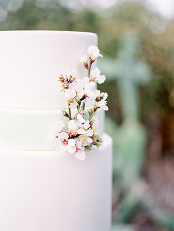 Greenhouse styled summer garden wedding shoot in San Juan Capistrano two tier white wedding cake with white and red floral accent decor on the side wedding photo idea